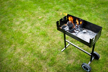 Barbaque in preparation, with fire, on grass  Stock Photo