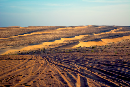 Wahiba sand desert with dunes and with tyre tracks in front, Oman