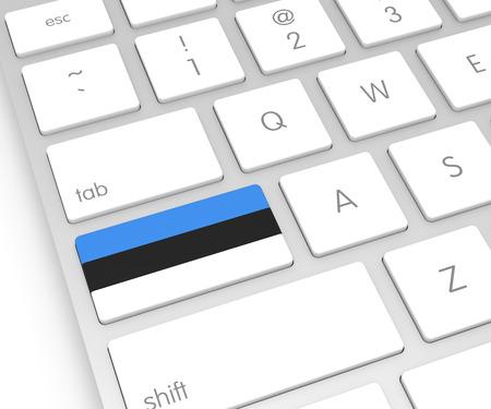 computer key: Estonia Flag on Computer Key. 3D rendering
