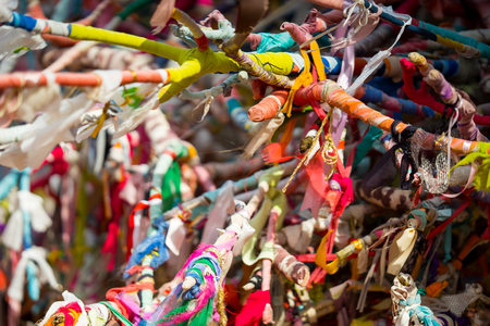 ours: Wish Tree branches tied with colorful ribbons