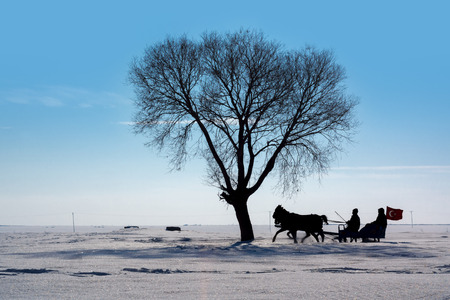 Sleigh Pulled by a Horse in Arpacay Village. Traditional Turkish Winter Fun. Kars, Turkey Stock Photo