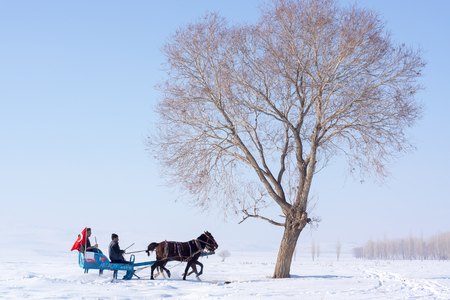 Kars, Turkey - February 13, 2014: Sleigh Pulled by a Horse in Arpacay Village. Traditional Turkish Winter Fun.