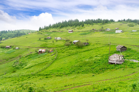 Foggy Plateau Highland with Giresun - Turkey