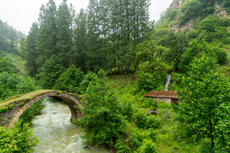 View of a arch bridge of highland, Giresun - Turkey