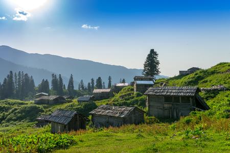 Summer Mountain Plateau Highland with Gorgit, Artvin, Turkey