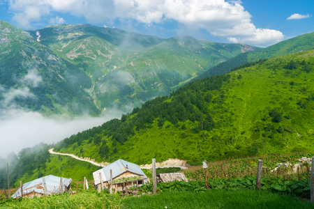 glades: Summer Mountain Plateau Foggy Highland with Artvin, Turkey