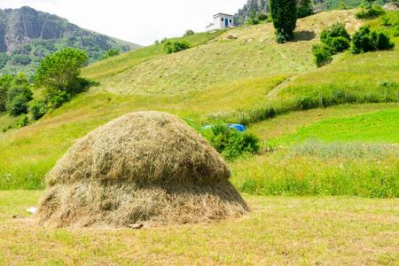 Straw bales on farmland at Artvin, Turkey