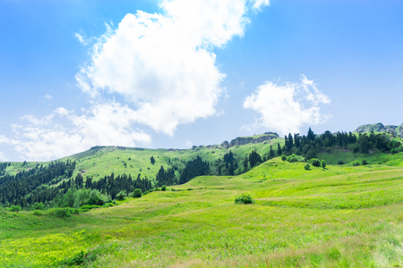 Summer Mountain Plateau Highland with Artvin, Turkey