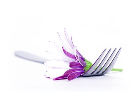 Fork and daisy Stock Photo - 498426
