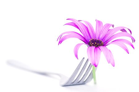 Fork and daisy Stock Photo - 498441