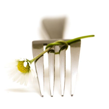 Fork and daisy Stock Photo - 498440