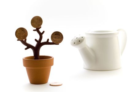 wateringcan: money tree and watering-can