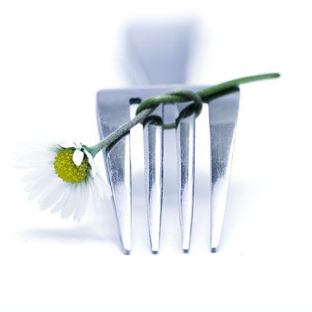 Fork and daisy Stock Photo - 677489