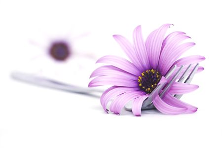 fork and flowers Stock Photo - 898796
