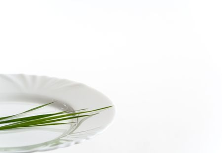 Closeup of white plate with grass. Copy space. White background. photo