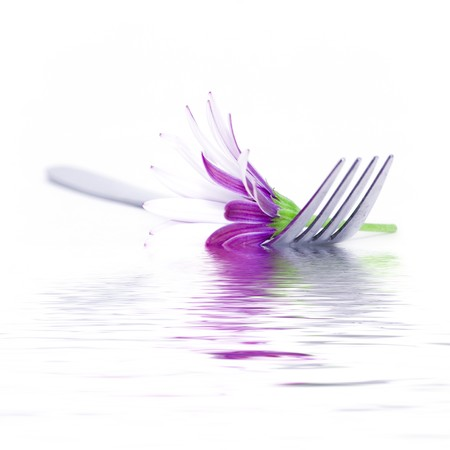 special steel: Fork and daisy on white background with soft focus reflected in the water