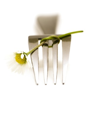 Fork and daisy on white background Stock Photo - 4164944