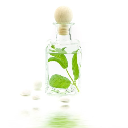 traquility: Jar with fresh leaves (SPA concept) with soft focus reflected in the water