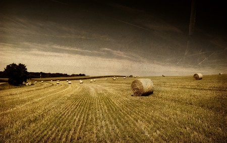 grunge image of Straw bales on farmland    Stock Photo - 4330949