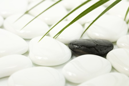speckle: One black stone standing out among white ones Stock Photo