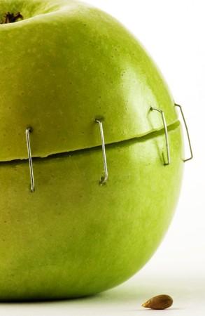 staples: Metal staples green apple seed  Stock Photo
