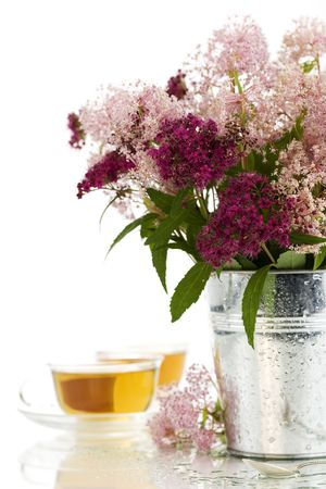 herbal tea and fresh wild flowers over white photo