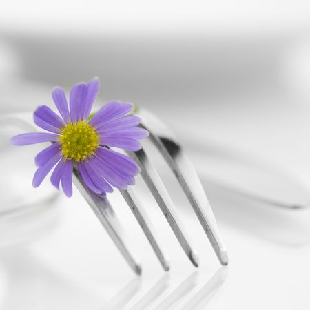fork and flower over white background. Health and diet concept Stock Photo - 5161252