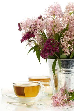 tannin: herbal tea and fresh wild flowers over white Stock Photo