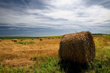 Straw bales on farmland with blue cloudy sky Stock Photo - 5369682