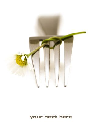 special steel: Fork and daisy on white background (with sample text)