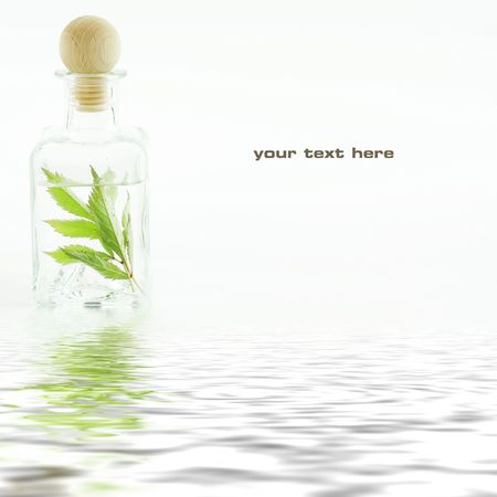 traquility: Jar with fresh leaves (SPA concept) with soft focus reflected in the water. With sample text Stock Photo