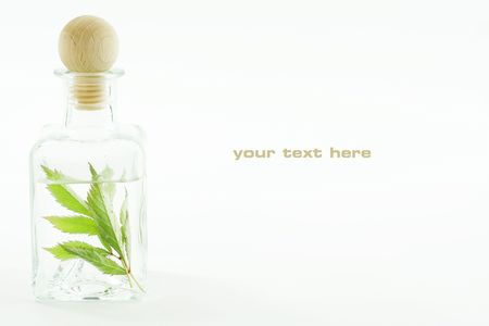 traquility: Jar with fresh leaves (SPA concept). With sample text