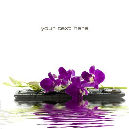 massaggio: Primo piano di bel viola orchidea massaggio pietre (sfondo bianco) con soft focus riflettono nell'acqua. Con testo di esempio Archivio Fotografico