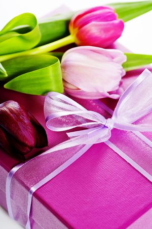 Pink tulips and gift box on a white background Stock Photo - 6715676