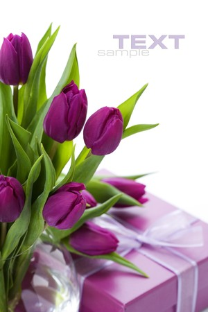 tulip flower: Pink tulips and gift box on a white background. With sample text.