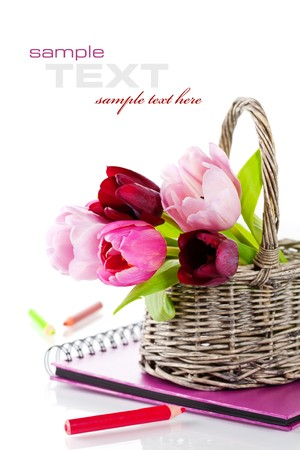 Pink tulips and pink album on a white background. With sample text. photo