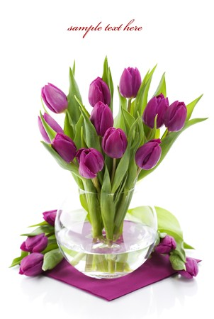 mixed flower bouquet: Pink tulips in a vase on white background. With sample text. Stock Photo