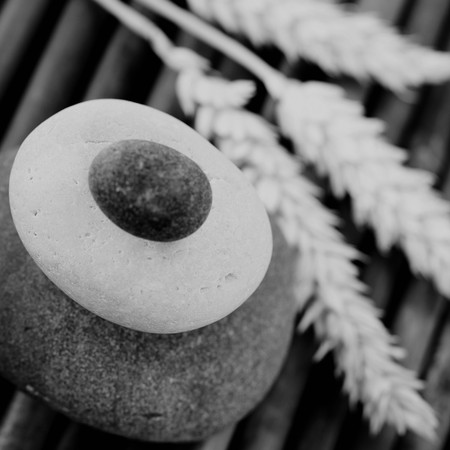 stack of balanced zen stones and wheat (black and white image) photo