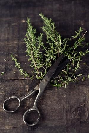 tomillo: Fresco tomillo y tijeras en la mesa de la cocina antigua