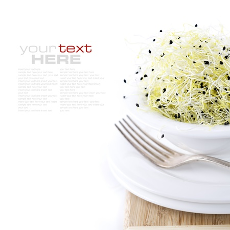 Garden cress in a white plate with fork (with space for text) photo