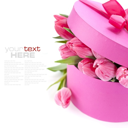 Pink tulips and gift box on a white background (with sample text) photo