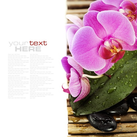 traditional wellness: spa concept (zen stones and orchid) over white with sample text
