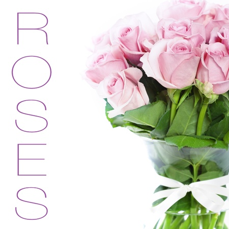 bouquet of pink roses in vase on the white background photo