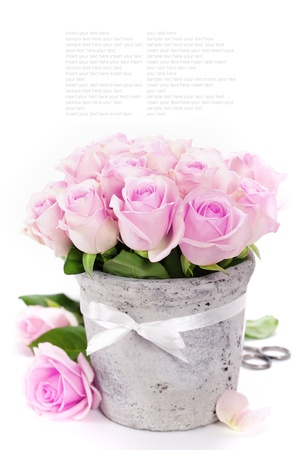 vases: bouquet of pink roses in a pot on the white background Stock Photo