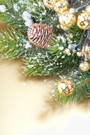 Christmas composition with branch of Christmas tree and decorations photo