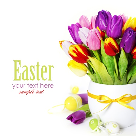 spring tulips with easter eggs  on white background (with sample text) Stock Photo