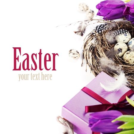easter eggs with purple tulip flowers  and gifts on white background (with sample text) photo