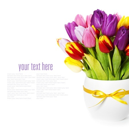 mixed flower bouquet: fresh spring tulips on white background (with sample text)