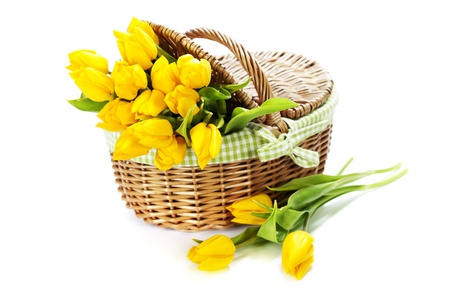 Yellow tulips in a basket on white background photo