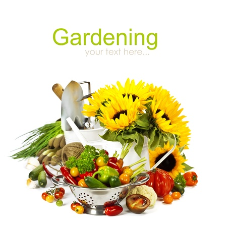 Fresh vegetables, flowers and garden tools over white photo